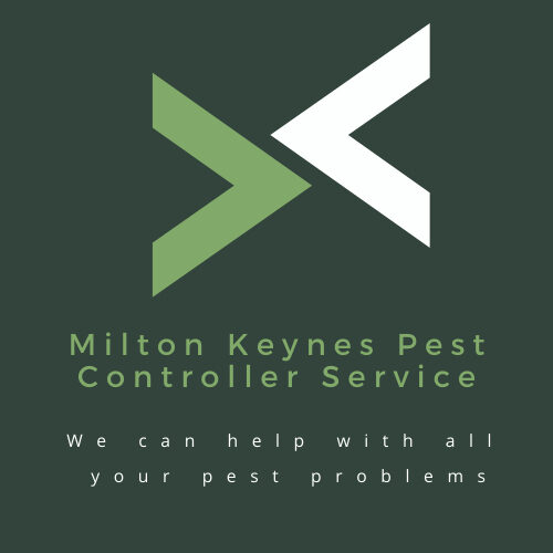 Pest Control in Buckinghamshire